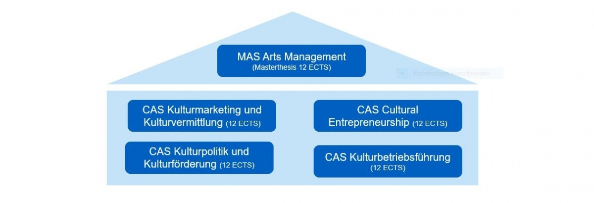 Master Master of Advanced Studies (MAS), MAS Arts Management - Das Studium